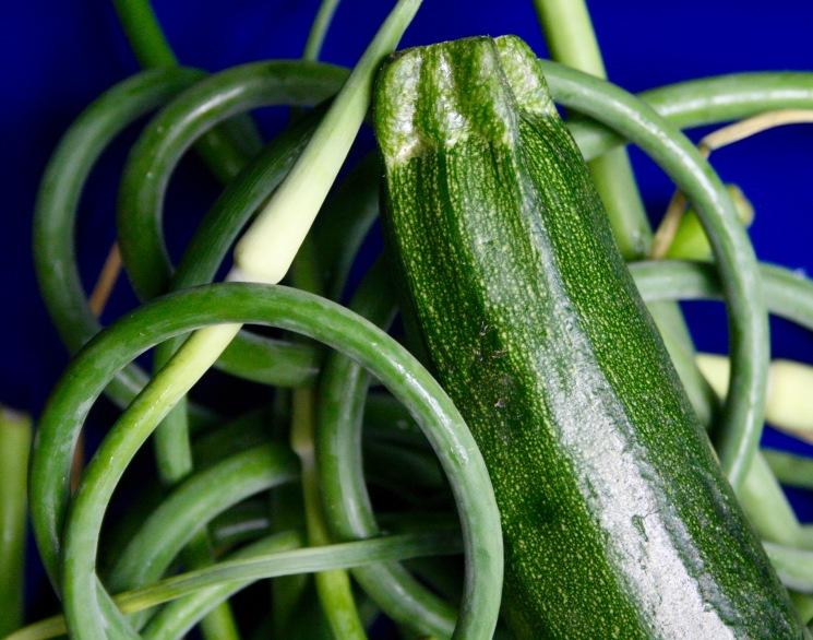 Fleurs d'ail fraîche et zucchinis